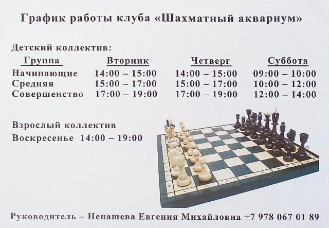 Шахматы в Приморском