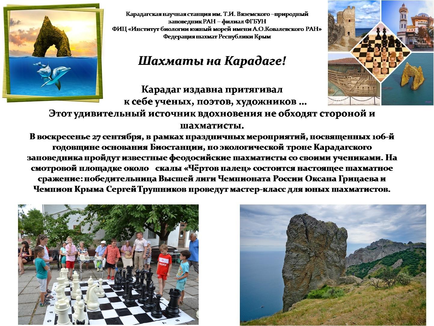 Шахматы на Карадаге!